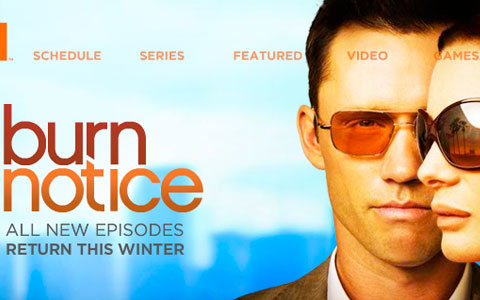 serien stream burn notice